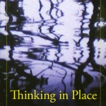 Thinking in Place: Art, Action, and Cultural Production by Carol Becker