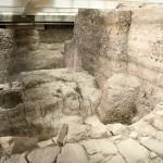 Salaborsa sotterranea