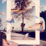 Giulio Paolini, opera grafica e collage