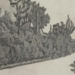 Il segno inciso di Giorgio Morandi